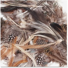 CKC 4514 Chenille Kraft Natural Feathers  CKC4514