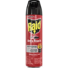 Raid Ant & Roach Killer Outdoor Fresh Scent
