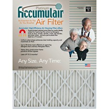 FLN FA20X244 Filters-NOW.com Platinum Accumulair Air Filter FLNFA20X244