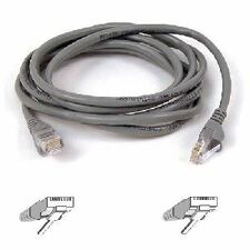 Belkin 8 ft Cat 5e Patch Cable