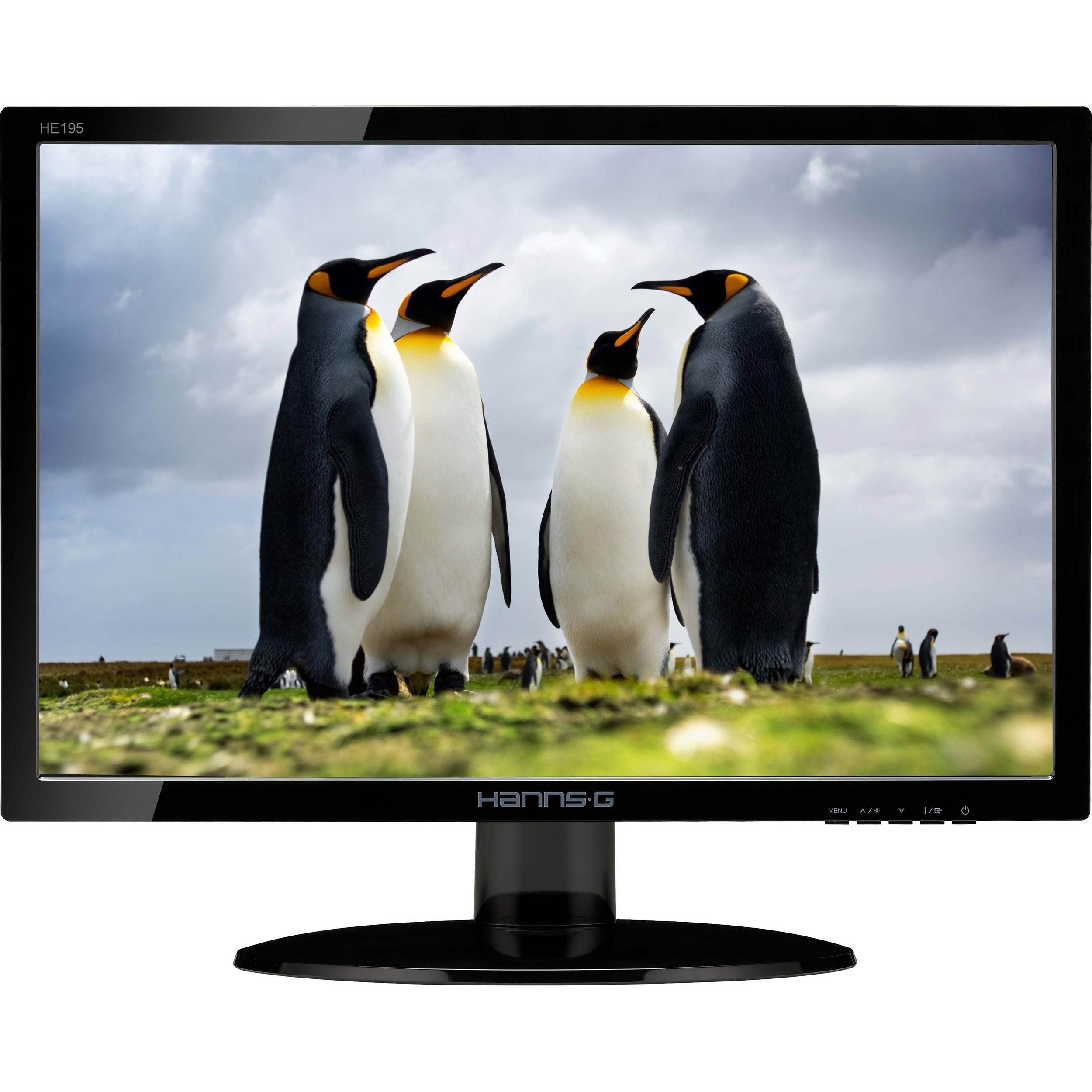 Hanns.G HE195ANB 18.5inch LED Monitor - 16:9 - 5 ms