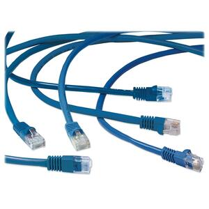 Exponent® Ethernet Patch Cable 7' Blue