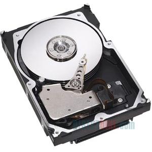 """IBM 42D0632 146 GB 2.5"""" Internal Hard Drive"""