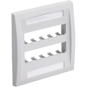 PANDUIT 10-Socket Faceplate