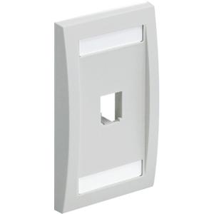 PANDUIT 1-Socket Faceplate