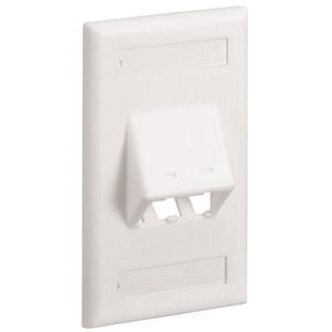 PANDUIT 2-Socket Faceplate