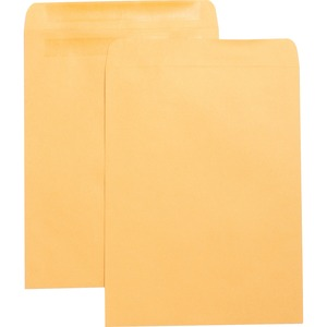 Business Source Press-To-Seal Catalog Envelopes