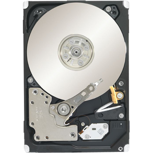 Seagate 1tb Constellation Sas 7200 Rpm 64mb 2.5in / Mfr. no.: ST91000640SS