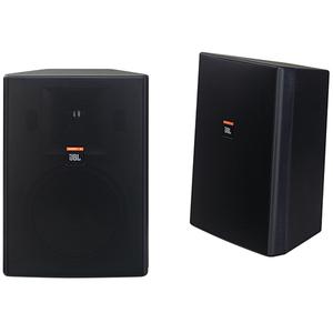 Harman JBL Professional Control 28 Indoor/Outdoor Speaker