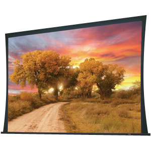 """Draper Access 102278L Electric Projection Screen - 133"""" - 16:9 - Ceiling Mount"""