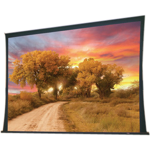 """Draper Access 102351 Electric Projection Screen - 137"""" - 16:10 - Ceiling Mount"""