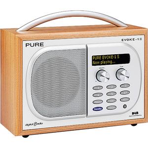 Pure Luxury Portable Digital and FM Radio