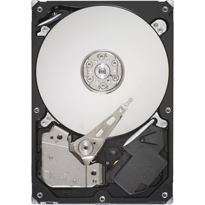 1tb SATA 7.2k RPM 32mb 3.5in Disc Prod Special Sourcing See Not / Mfr. No.: St31000524as
