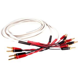 Black Rhodium Jive BiWire Banana Plug Audio Cable