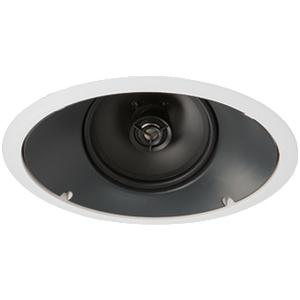 Paradigm CS-60R-30 Speaker