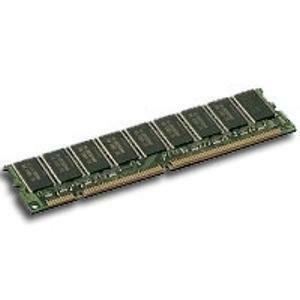 Juniper 256 MB SDRAM Memory Module