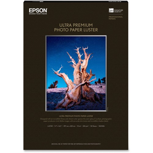 Epson Glossy photo paper - A3 (11 in x 16in)