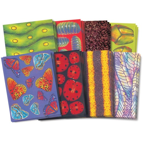 """Roylco Bug Craft Paper - Decoration, Poster, Project - 8.50"""" (215.90 mm)Width x 11"""" (279.40 mm)Length - Buggy Designs - 40 / Pack"""