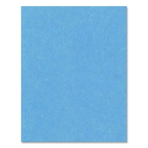 """Hilroy Heavyweight Bristol Board - Art - 22""""Height x 28""""Width - 1 Each - Light Blue"""