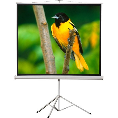 ELUNEVISION 84X84IN PORTABLE TRIPOD PROJECTION SCREEN