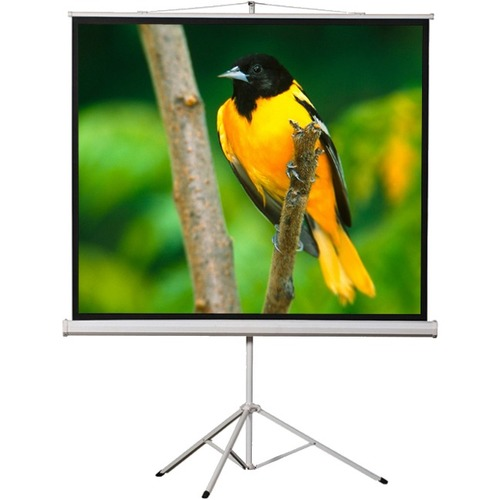 ELUNEVISION 96X96IN PORTABLE TRIPOD PROJECTION SCREEN