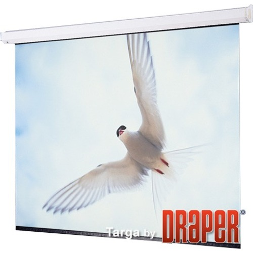 "Draper Targa Electric Projection Screen - 220"" - 16:9 - Wall Mount, Ceiling Mount"
