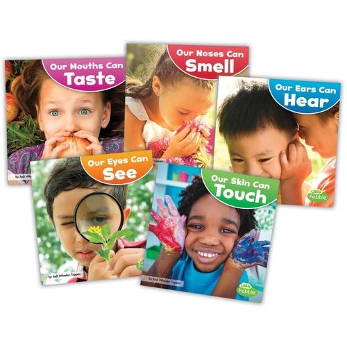 Capstone Publishers Our Amazing Senses Printed Book by Jodi Lyn Wheeler-Toppen - Book - Grade Pre K-2