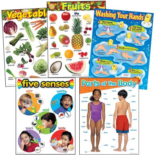 Trend Healthy Living Learning Charts Combo Pack - Theme/Subject: Learning - Skill Learning: Parts of Body, Fruit & Vegetable, Senses, Gross Motor - 5 / Pack
