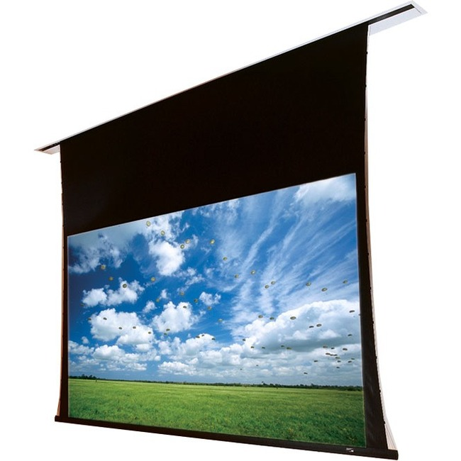 """Draper Access 102352L Electric Projection Screen - 165"""" - 16:10 - Ceiling Mount"""