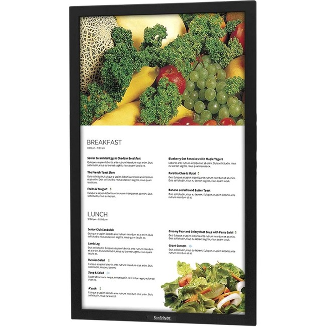 42 PRO SERIES DISPLAY PORTRAIT- BLK