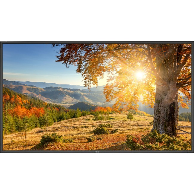 "NEC Display 75"" LED Backlit High Brightness Display"