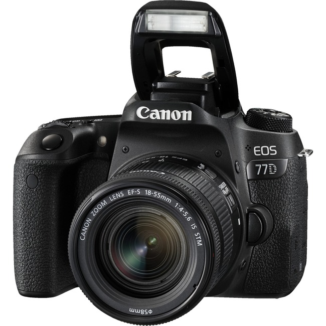 Canon EOS 77D 24.2 Megapixel Digital SLR Camera with Lens - 18 mm - 55 mm