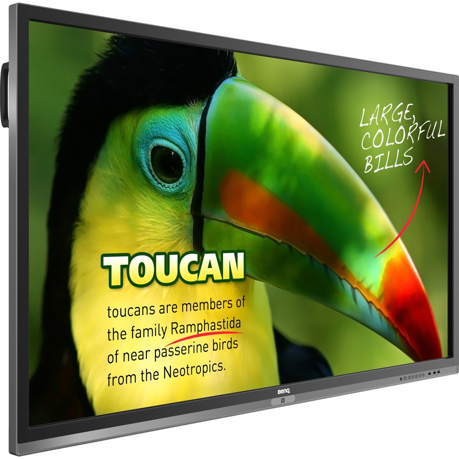 BenQ Education RP653 65inch LED LCD Touchscreen Monitor - 16:9 - 6 ms