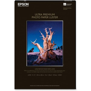 Epson Glossy photo paper - Super B (13 in x 19 in)