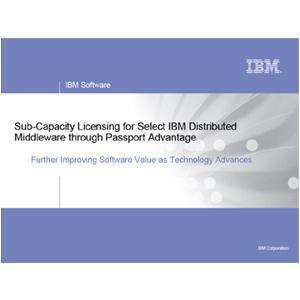 IBM WebSphere Portal Server - License - 20 Authorized User