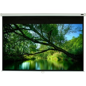 ELUNEVISION 70X70IN MANUAL PROJECTION screen