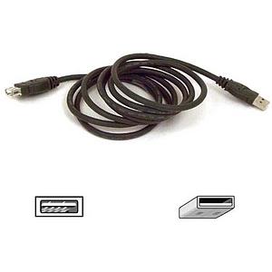 Belkin Components - Belkin PRO Series - USB extender - 4 pin USB Type A (M) - 4