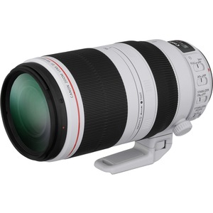 Canon - 100 mm to 400 mm - f/5.6 - Telephoto Zoom Lens for Canon EF - Designed for Digital