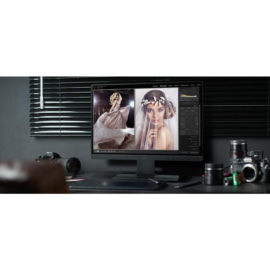 BenQ SW240 61.2 cm 24.1And#34; LED LCD Monitor - 16:10 - 5 ms GTG - 1920 x 1200 - 1.07 Billion Colors - 250 cd/mAndamp;#178; - 20,000,000:1 - WUXGA - DVI - HDMI - DisplayPort