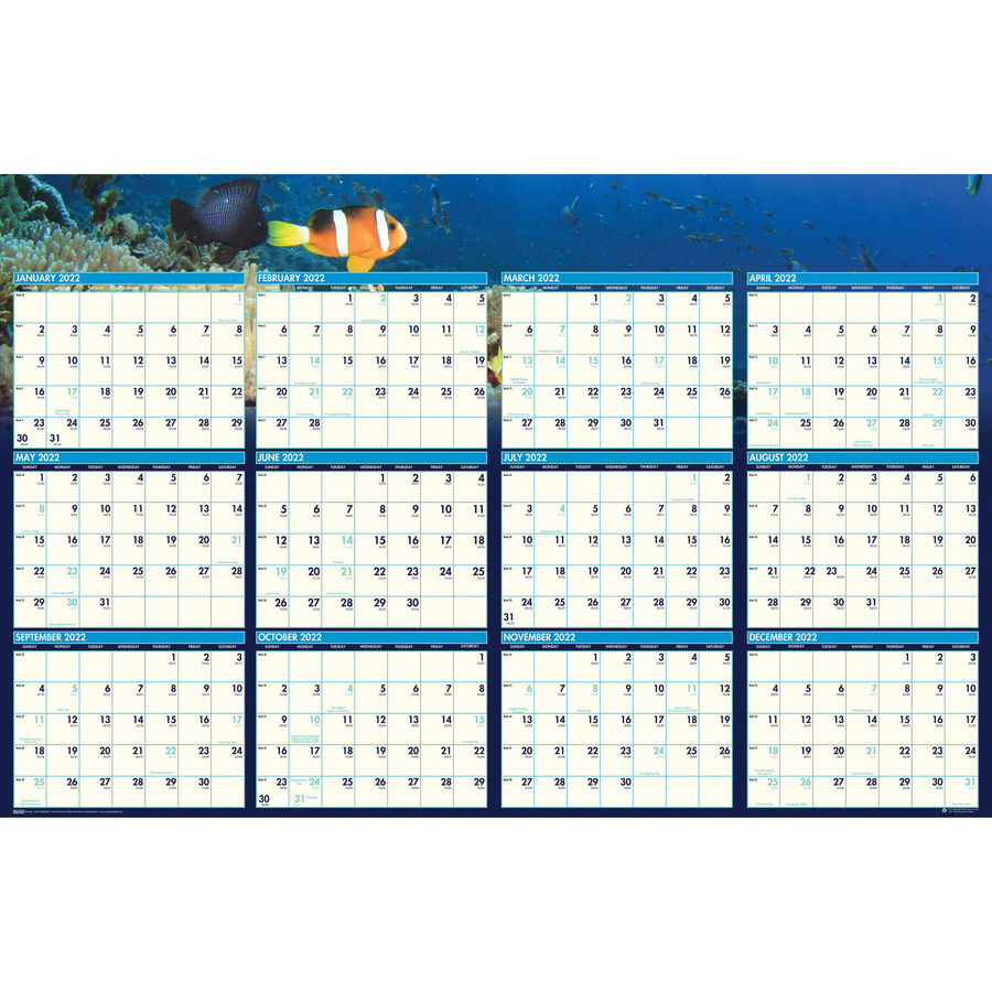 House of Doolittle Earthscapes Sea Life Laminated Planner - Yes - 1 Year - January 2020 till December 2020 - 24