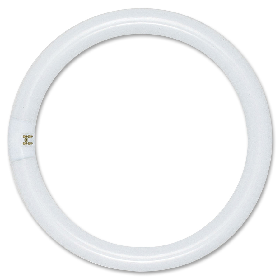 Satco 22 Watt T9 Circle Fluorescent Tube Lamp