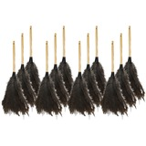 Genuine Joe Feather Duster - 12 / Carton - Ostrich Feather - Brown GJO90118CT