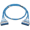 Panduit Cat.6 Utp Cable QCRBCBCBXX30