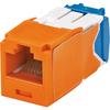 Panduit Mini-com TX-6 Modular Insert CJ6X88TGOR-24 00822088065531