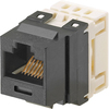 Panduit Netkey NK688MBU-Q Cat.6 Connector NK688MBU-Q 00007498377140