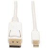 Tripp Lite 10ft Mini Displayport To Displayport Adapter Converter Cable Mdp To Dp 4K X 2K @ 30Hz M/m P583-010 00037332174604