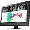 Eizo Radiforce MX242W 24.1 Inch Led Lcd Monitor - 16:10 - 12 Ms MX242W-BK 00690592039023