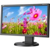 Nec Display Multisync E203WI-BK 20 Inch Led Lcd Monitor - 16:9 - 14 Ms E203WI-BK 00805736059342