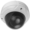 Levelone FCS-3085 4 Megapixel Network Camera - Color FCS-3085 00846359043851