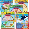 Trend Life Cycles Learning Charts Combo Pack - Theme/Subject: Learning - Skill Learning: Life Cycle - 5-9 Year - 1 Set